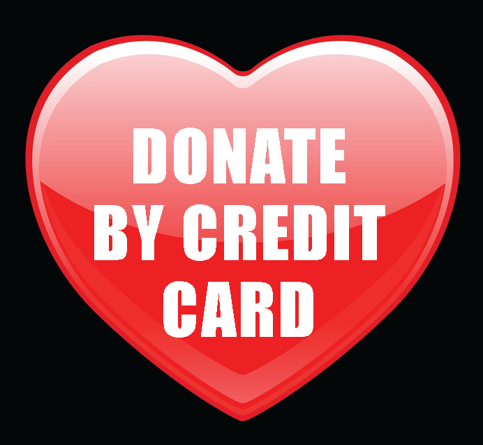 Donate with Credit Card